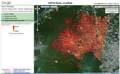 Etat de la déforestation dans la