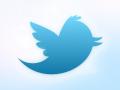 twitter logo BIG