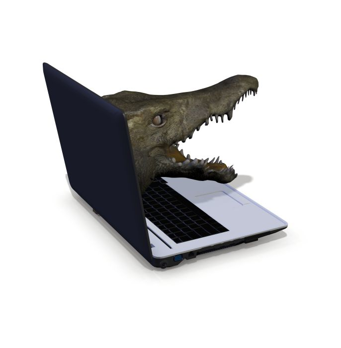 crocodile-portable-laptop-crozier