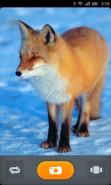 Firefox OS camera