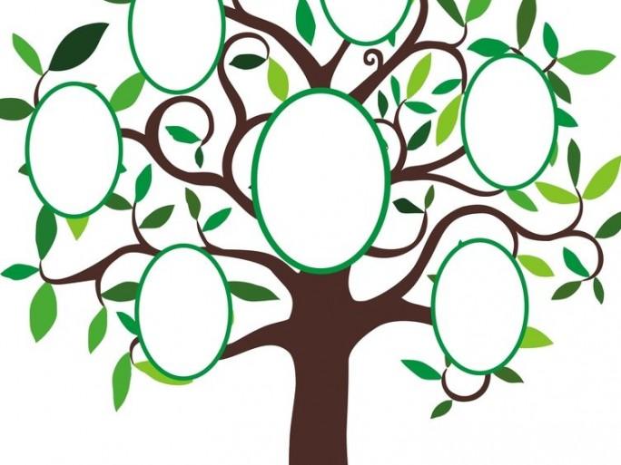 ancestry-permira-genealogie