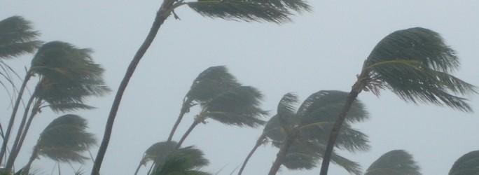 Google événement Android Nexus ouragan Sandy