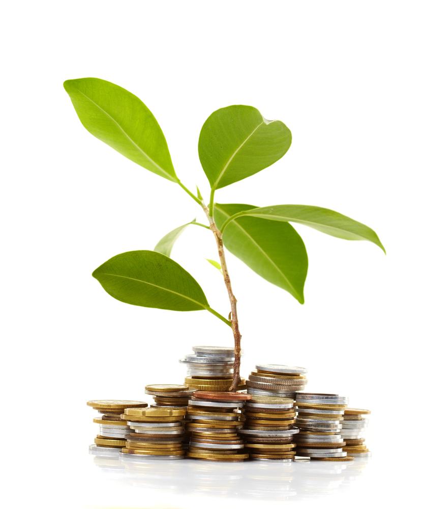 Financement start up quel coup d 39 insight venture apr s for Financement pour terrain