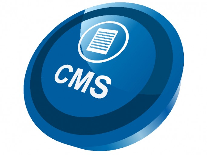 CMS WordPress 3.5
