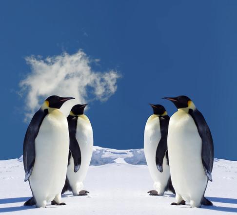 Linux kernel 3.8