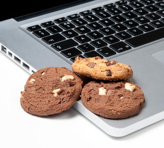 google-cookies-safari