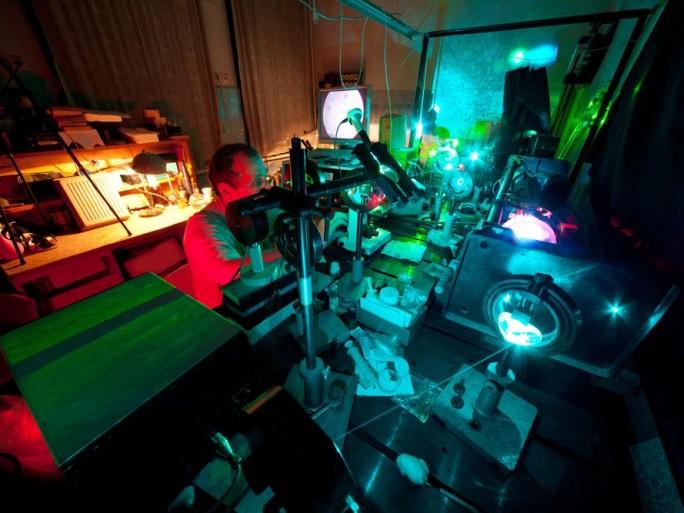 etudes-sciences-informatiques-tronquees-cyril-labbe-chercheur-chasse