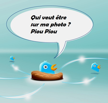 twitter-tag-image-une
