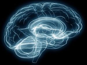 cerveau-robotique