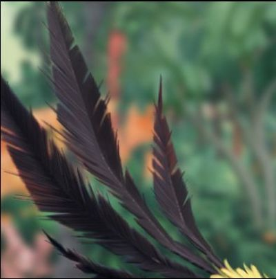 rovio-reduction-effectif-angry-birds