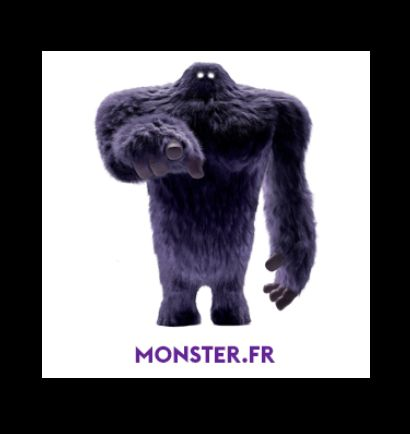e-recrutement-ranstadt-acquiert-monster