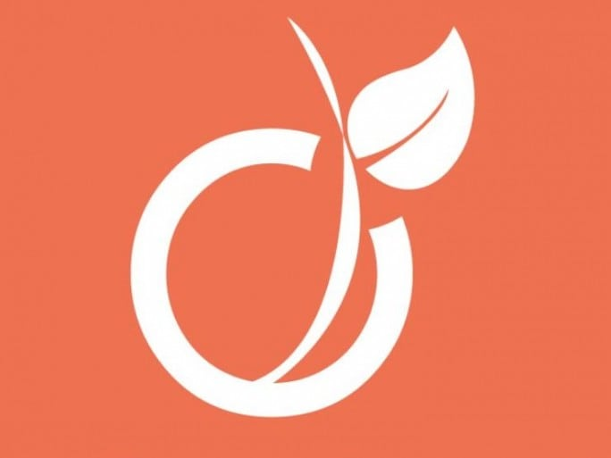 viadeo-logo-ok