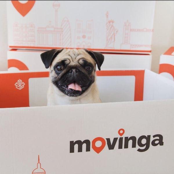 Déménagements en ligne : Movinga aménage son financement