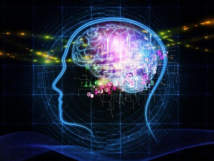 reseaux-neuronaux-reprogrammation