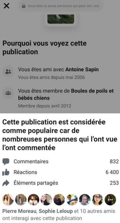 facebook-pourquoi-publication