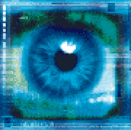 Biometrie - Big Brother